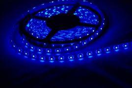 Светодиодная LED лента SMD3528 120 IP65 герметичная синяя (Standart)