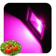 Прожектор Fito 50Вт IP65 для растений