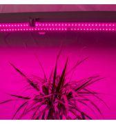 Светильник Fito 1200мм 36Вт красный:синий 5:1 IP65 для растений