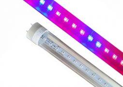 Светодиодная лампа для растений Т8 600мм 9Вт красный: синий 4: 2 ФИТО свет